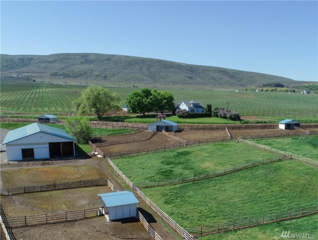 701 Perry Rd, Ellensburg, WA 98926 (#1119282) :: Real Estate Solutions Group