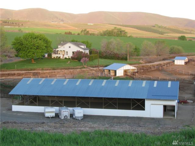 701 Perry Rd, Ellensburg, WA 98926 (#1119309) :: Homes on the Sound