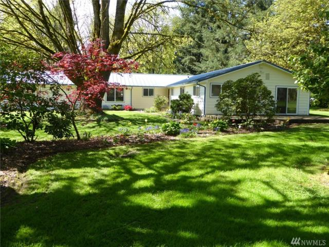 17345 Applegate St SW, Rochester, WA 98579 (#1119742) :: Ben Kinney Real Estate Team