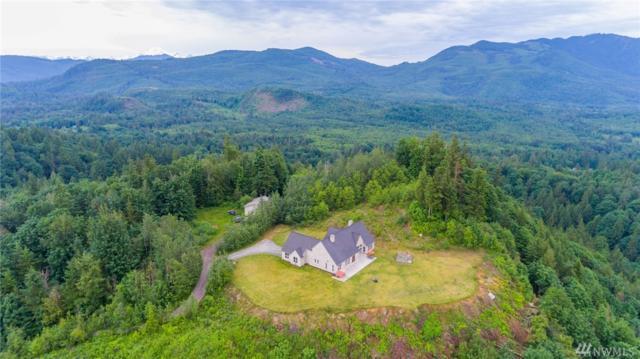 9149 Anderson Lake Dr, Sumas, WA 98295 (#1132189) :: Ben Kinney Real Estate Team