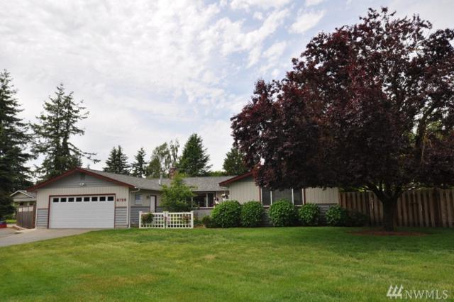 6729 La Monte Dr, Lynden, WA 98264 (#1140847) :: Ben Kinney Real Estate Team