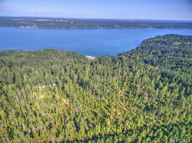 2-XX Whitney Rd, Quilcene, WA 98376 (#1160880) :: Homes on the Sound