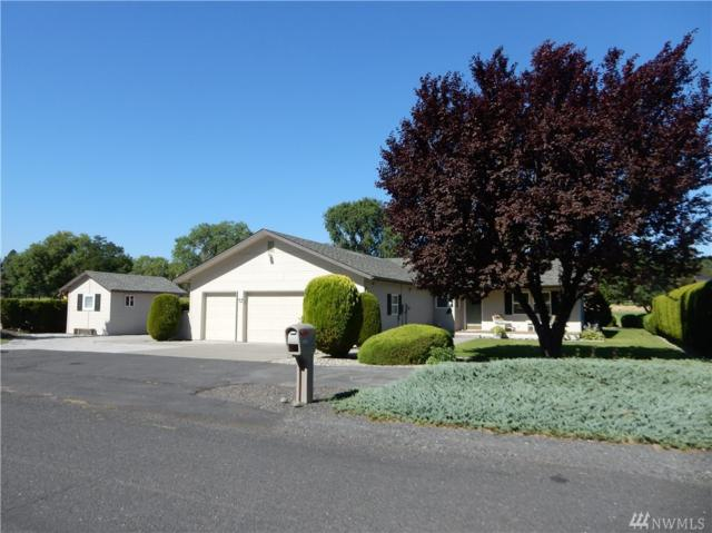 19312 Lakeview Dr NW, Soap Lake, WA 98851 (#1163398) :: Ben Kinney Real Estate Team