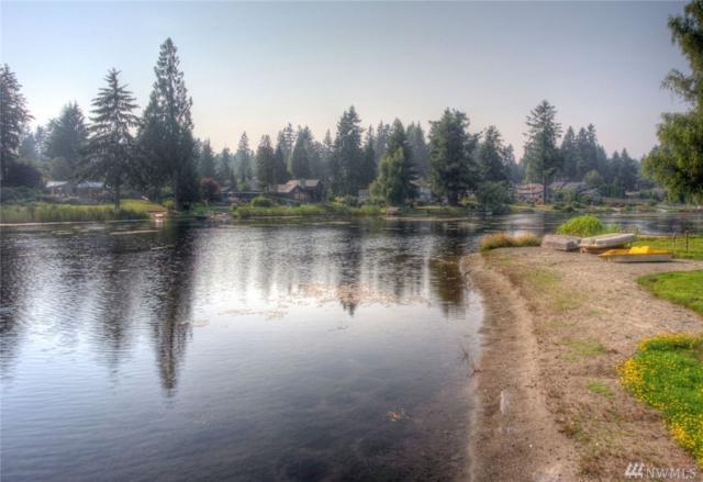 24324 Crystal Lake Place, Woodinville, WA 98077 (#1177516) :: Ben Kinney Real Estate Team