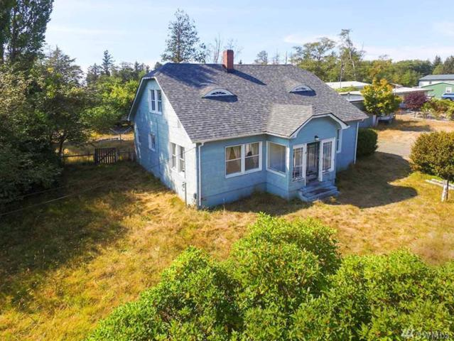 823 State Route 101, Chinook, WA 98614 (#1187010) :: Ben Kinney Real Estate Team
