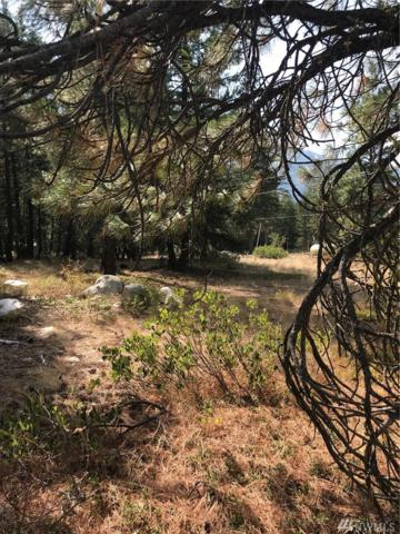 0-Lot 65 Littell Rd, Mazama, WA 98833 (#1195080) :: Kimberly Gartland Group