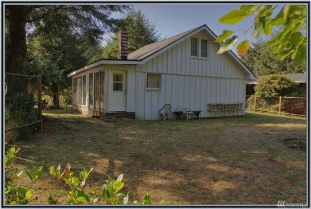 16 Lagoon Lane, Copalis Beach, WA 98535 (#1197548) :: Homes on the Sound