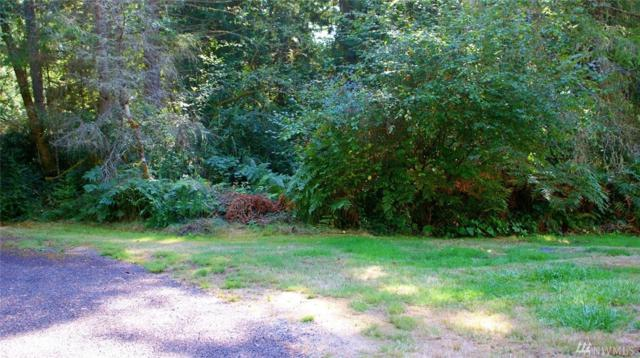 12408 93rd St, Anderson Island, WA 98303 (#1198023) :: Ben Kinney Real Estate Team