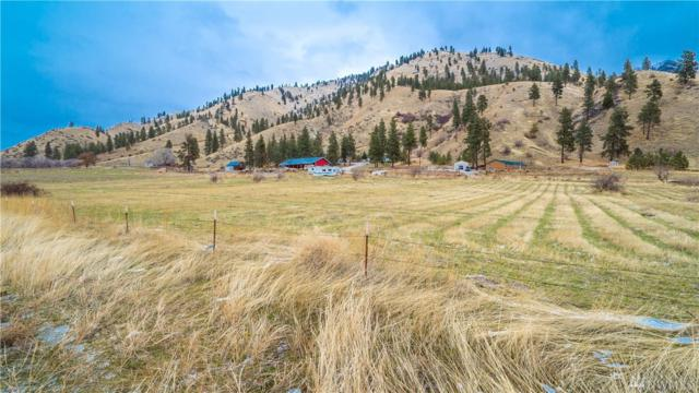 6495 Navarre Coulee Rd, Chelan, WA 98816 (#1223714) :: Nick McLean Real Estate Group