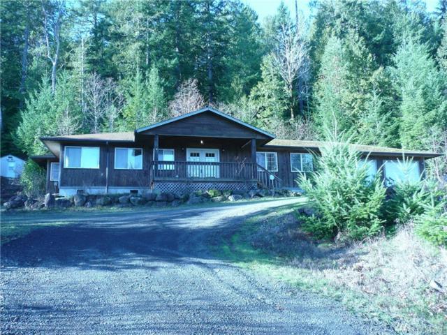 304754 Highway 101, Brinnon, WA 98320 (#1231488) :: Homes on the Sound