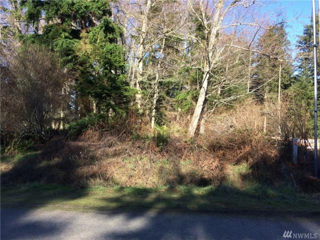 0-Lot 9 Spahr Rd, Greenbank, WA 98253 (#1243704) :: Homes on the Sound