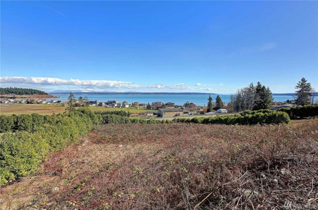 517 Michelle Dr, Camano Island, WA 98282 (#1244064) :: Real Estate Solutions Group