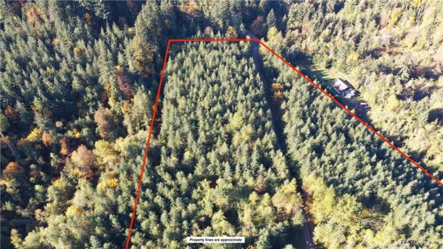 0-XX Blue Mt Rd, Acme, WA 98244 (#1244808) :: Kimberly Gartland Group