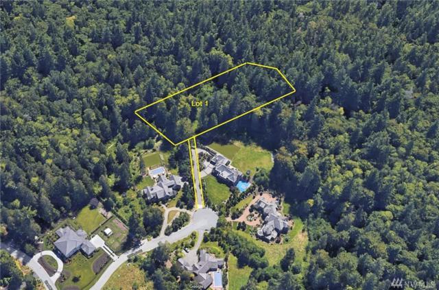 6750 266th Ct SE, Issaquah, WA 98029 (#1245083) :: The DiBello Real Estate Group