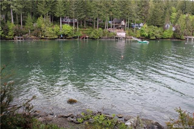 151 N Webster Lane, Lilliwaup, WA 98555 (#1249841) :: Homes on the Sound