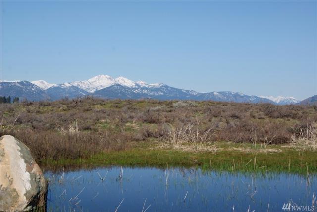 0 Bear Creek Rd, Winthrop, WA 98862 (#1251299) :: Kimberly Gartland Group