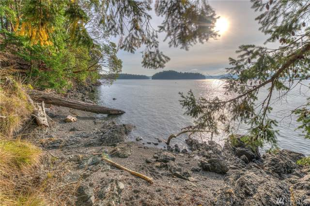 0 Sunnyside Lane, Crane Island, WA 98245 (#1257452) :: M4 Real Estate Group