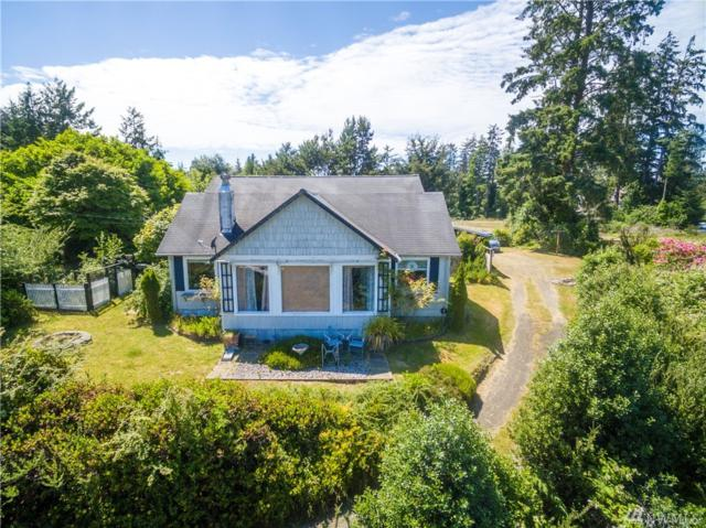 26803 Dell St, Nahcotta, WA 98637 (#1267347) :: Icon Real Estate Group