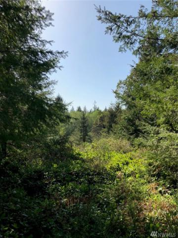 9706 Steffensen Rd, Anderson Island, WA 98303 (#1268828) :: Morris Real Estate Group