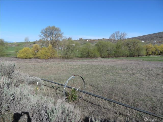 0 Parke Creek Rd, Ellensburg, WA 98926 (#1269394) :: Homes on the Sound