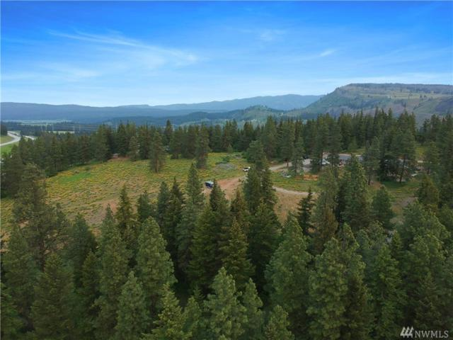 2 Thorp Prairie Rd, Cle Elum, WA 98922 (#1277999) :: Real Estate Solutions Group