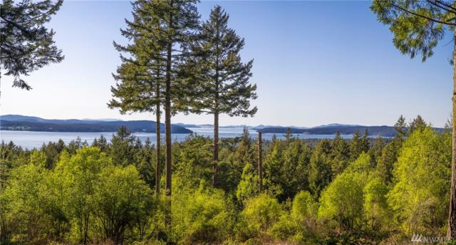 275 Valley View Rd, Lopez Island, WA 98261 (#1286782) :: Homes on the Sound
