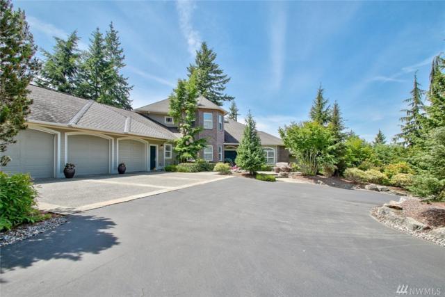 18419 Peregrine Lane, Mount Vernon, WA 98274 (#1290056) :: McAuley Real Estate