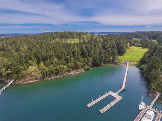 67 Roulac Lane, Friday Harbor, WA 98250 (#1305841) :: The Vija Group - Keller Williams Realty