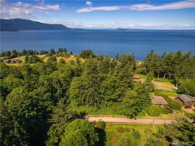 1 Island View Lane, Lummi Island, WA 98262 (#1316912) :: Kimberly Gartland Group