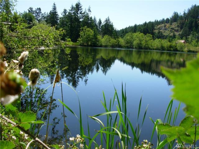 0 N Of Gill Lane And Bacon Lake Rd, San Juan Island, WA 98250 (#1324058) :: Homes on the Sound