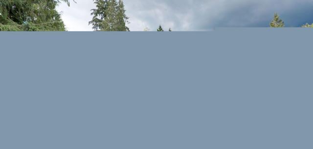 19507 Parson Creek Rd, Sedro Woolley, WA 98284 (#1325027) :: Beach & Blvd Real Estate Group