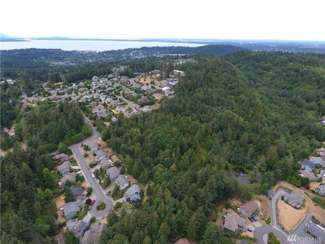 0 48th St, Bellingham, WA 98229 (#1341104) :: Canterwood Real Estate Team