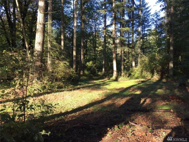 13810 NW 115th Ave NW, Gig Harbor, WA 98329 (#1342700) :: Canterwood Real Estate Team