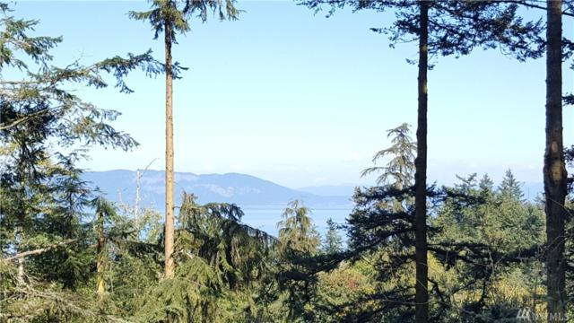 0 Lot 22, 23 Obstruction Pass Rd, Orcas Island, WA 98279 (#1343952) :: Real Estate Solutions Group