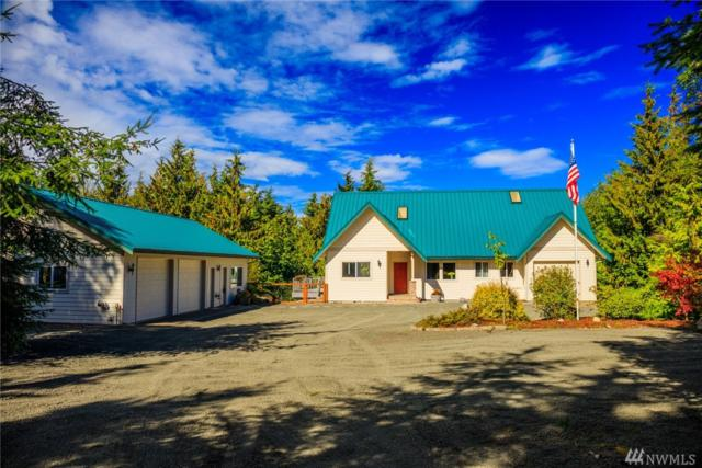 31 Guy Kelly Rd, Port Angeles, WA 98362 (#1345238) :: Chris Cross Real Estate Group