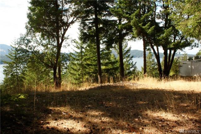 0 Highlands Dr, Orcas Island, WA 98245 (#1346578) :: Homes on the Sound