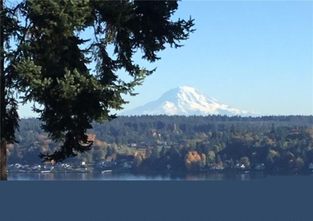 9616 126th St Ct NW, Gig Harbor, WA 98329 (#1347368) :: Homes on the Sound