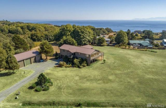 245 Ocean View Dr, San Juan Island, WA 98250 (#1351297) :: Homes on the Sound