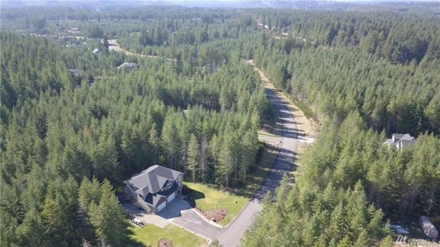 27381 318th Dr SE, Ravensdale, WA 98051 (#1367057) :: Real Estate Solutions Group