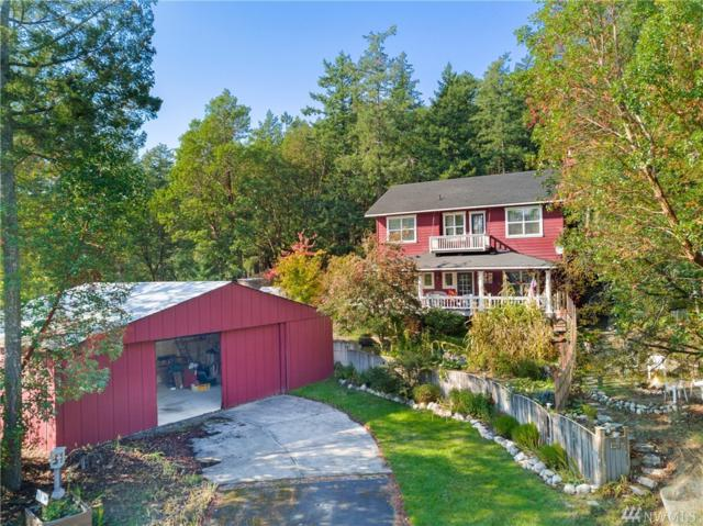 1467 Tarte Rd, Friday Harbor, WA 92850 (#1374768) :: Real Estate Solutions Group