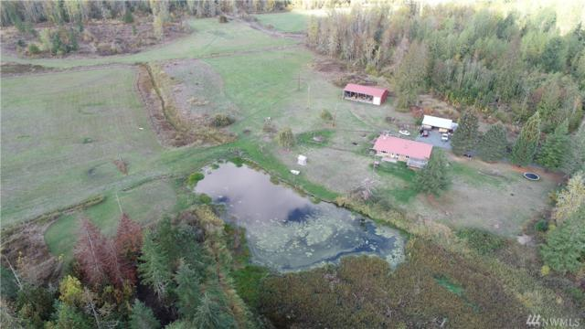 42912 Roedomsky Rd E, Eatonville, WA 98328 (#1376737) :: Kwasi Bowie and Associates
