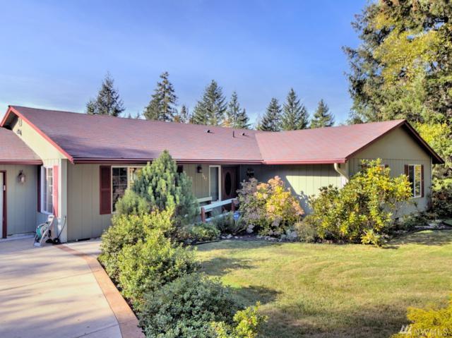 510 E Wilson Way, Grapeview, WA 98546 (#1377764) :: HergGroup Seattle