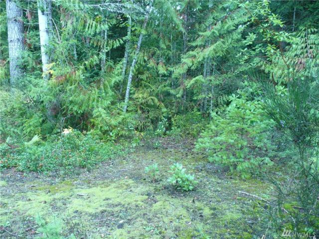 0-lot 23 Seal Dr, Brinnon, WA 98320 (#1378188) :: Real Estate Solutions Group