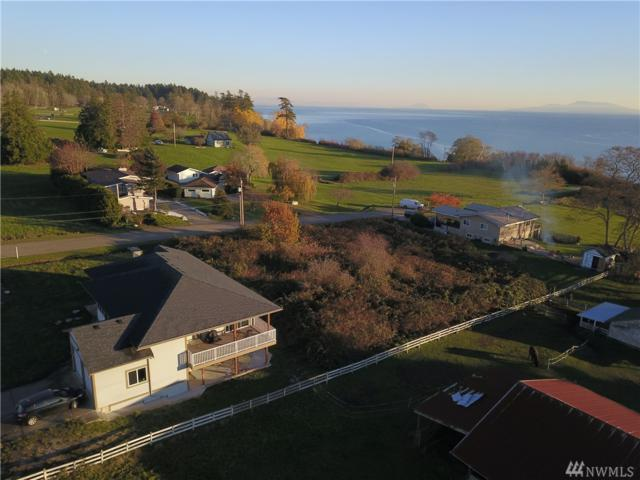 2031 Cliffside Dr, Point Roberts, WA 98281 (#1381666) :: Kimberly Gartland Group