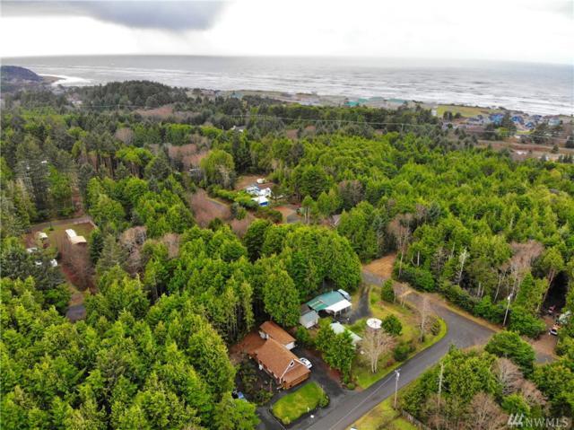 34 Paradise Lane, Pacific Beach, WA 98571 (#1389368) :: Homes on the Sound