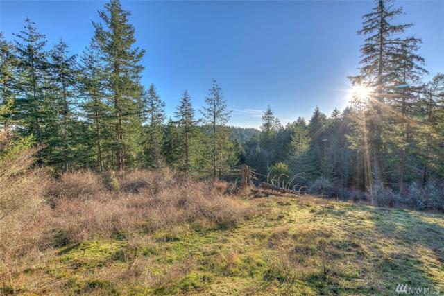 4489 Point Lawrence Rd, Orcas Island, WA 98245 (#1395365) :: Kimberly Gartland Group