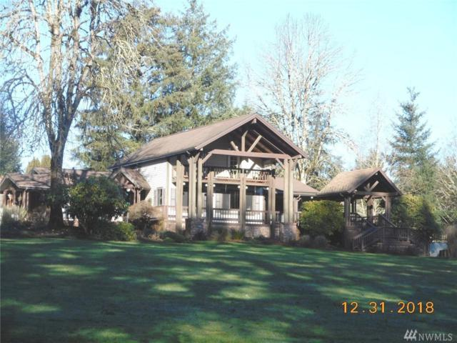 131 Crater View Dr, Silver Creek, WA 98585 (#1399653) :: Priority One Realty Inc.
