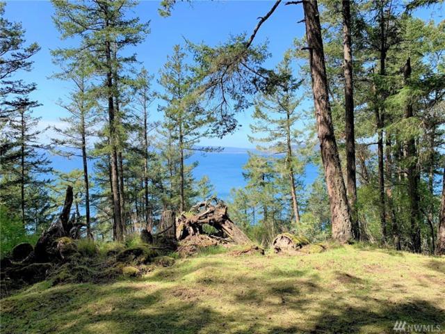 301 Karen Lane, Orcas Island, WA 98245 (#1409416) :: Ben Kinney Real Estate Team