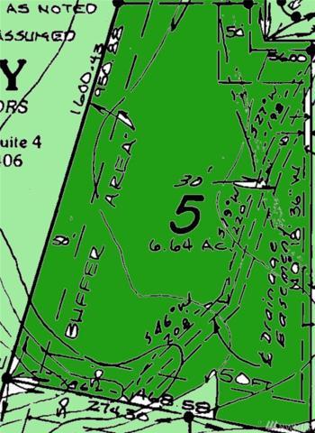 8416 128th Av Ct, Anderson Island, WA 98303 (#1409645) :: Kimberly Gartland Group