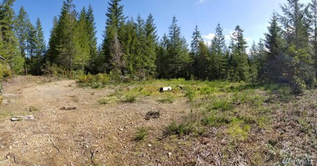17 W Ludvick Lake Lot 17 Dr, Seabeck, WA 98380 (#1414098) :: Keller Williams Western Realty